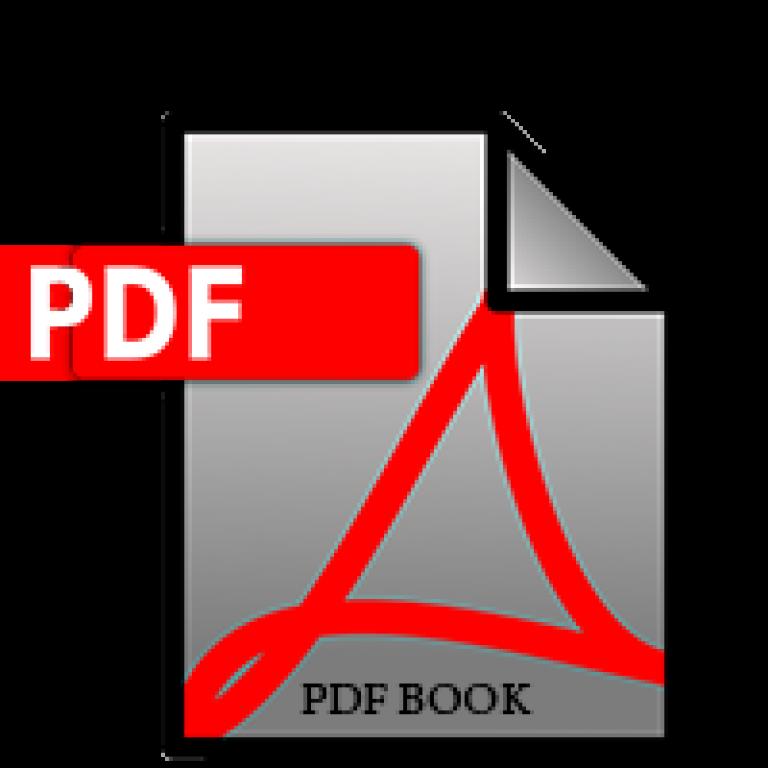 Buy Hindi Typing Practice PDF book